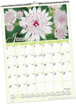 Gardending Calendar for the Victoria Texas Area